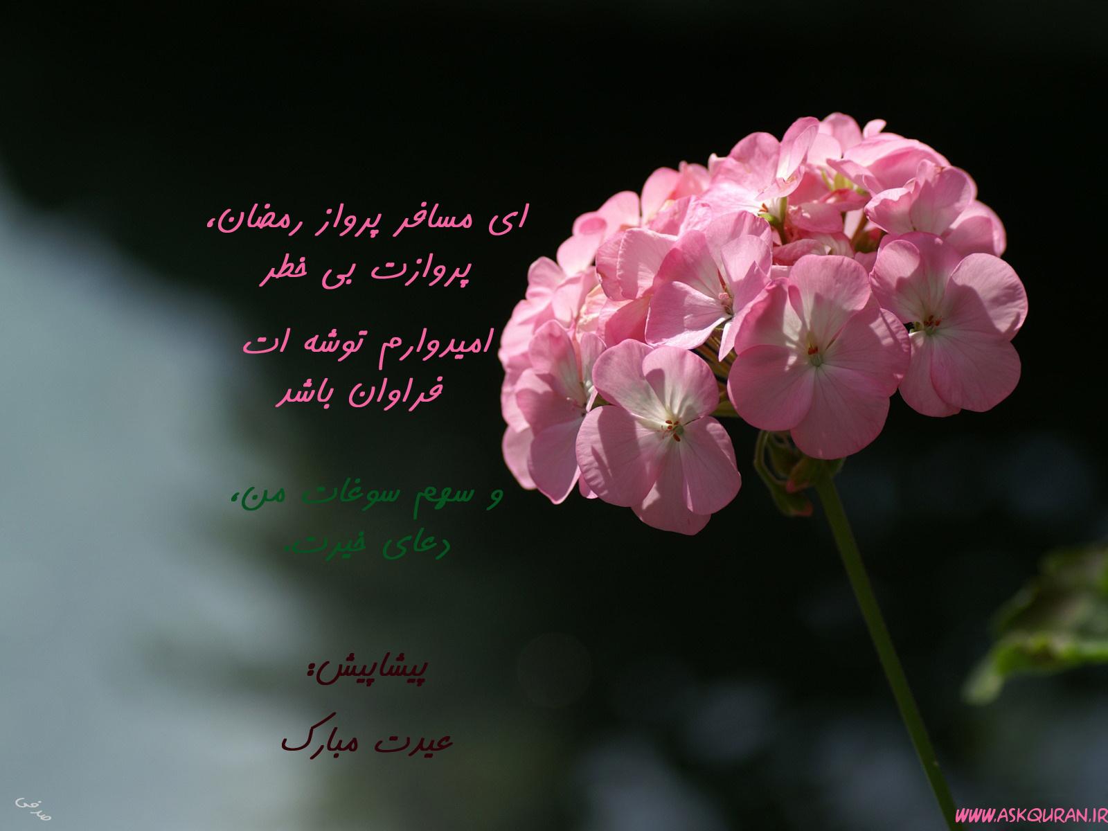 شمیم عید بندگی-ویژه نامه حلول ماه شوال -عید سعید فطر 1437